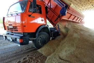 Rusko poskytne humanitární pomoc Sýrii v podobě stovek tisíc tun pšenice
