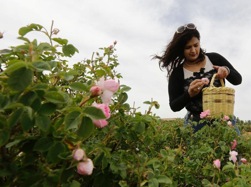 """Bez chemie: Mezi Syřany narůstá poptávka po """"bio"""" produktech"""
