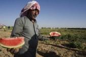 Na veletrhu podepsány smlouvy o exportu více než 50 tisíc tun zemědělských produktů