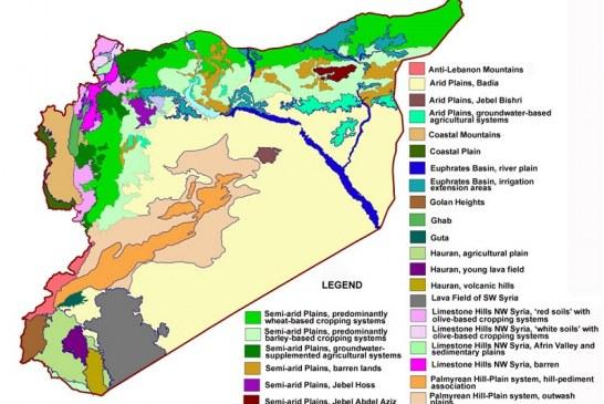 Pěstování strategických plodin v provincii ar-Raqqa