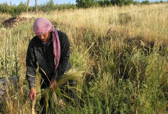 Nové smlouvy na export zemědělských produktů