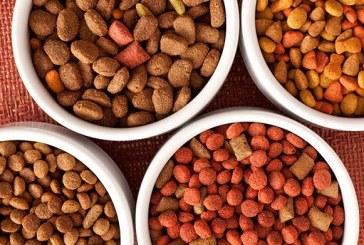 Investiční příležitost v oblasti průmyslové výroby krmiv