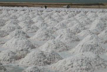 Těžba palmyrské soli má vsyrské ekonomice významné místo